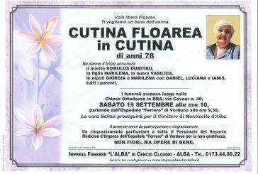 Floarea Cutina in Cutina