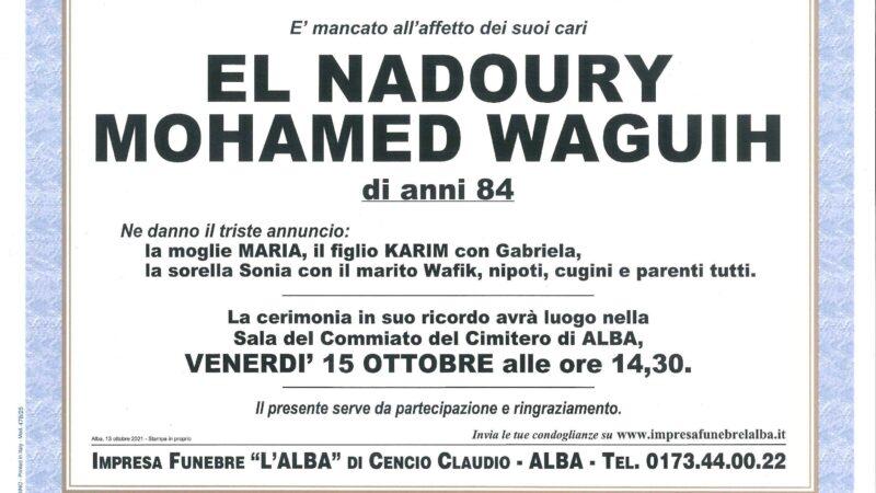 El Nadoury Mohamed Waguih